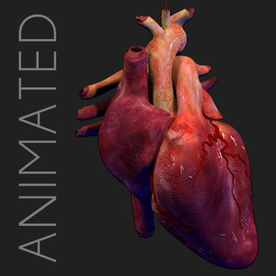 Heart Pro Hareketli Dokulu royalty-free 3d model - Preview no. 8