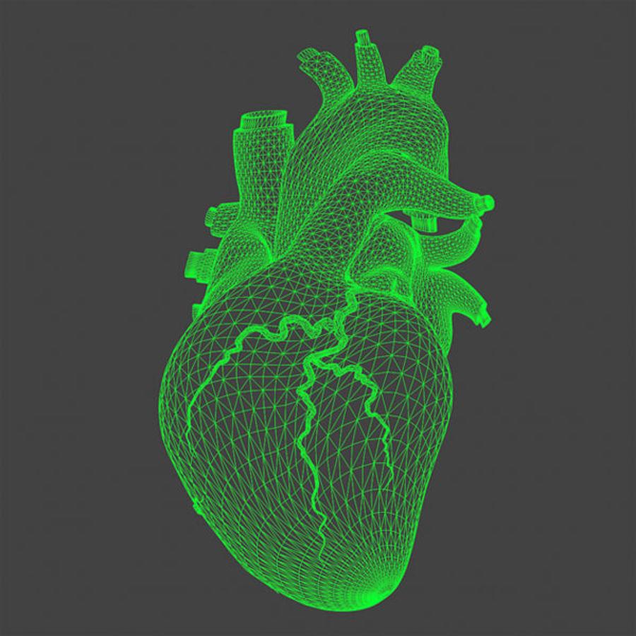 Heart Pro Hareketli Dokulu royalty-free 3d model - Preview no. 11