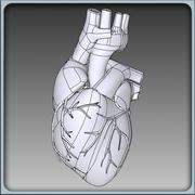 Human Heart Solidworks 3d model