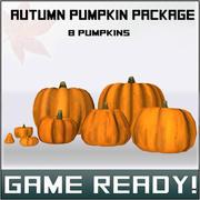 Autumn Pumpkin Package 3d model