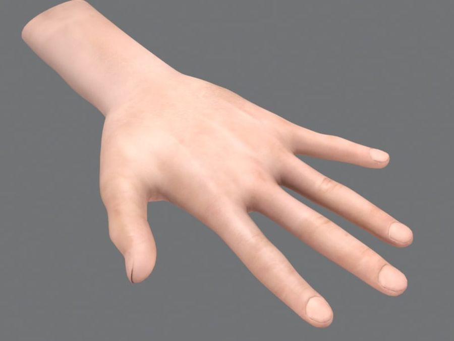 Rigged Hand royalty-free 3d model - Preview no. 3