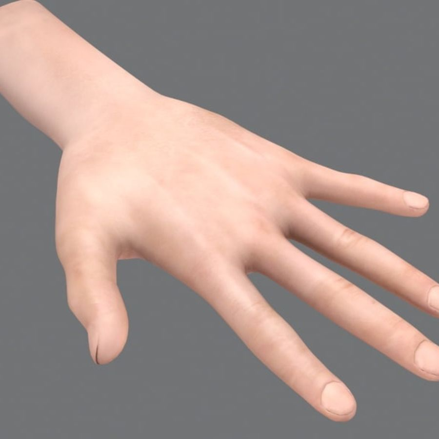 Rigged Hand royalty-free 3d model - Preview no. 7