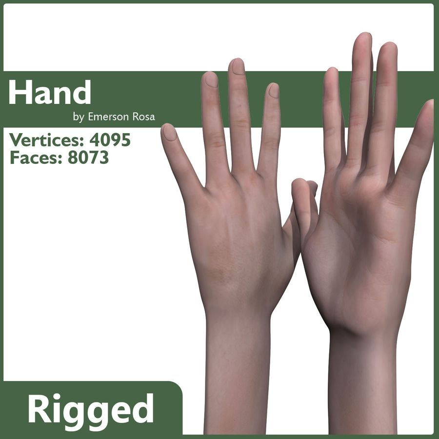 Rigged Hand royalty-free 3d model - Preview no. 1