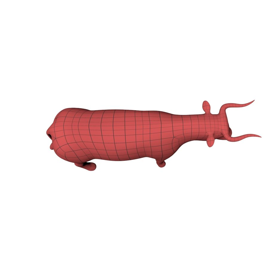 Bull base mesh royalty-free 3d model - Preview no. 4