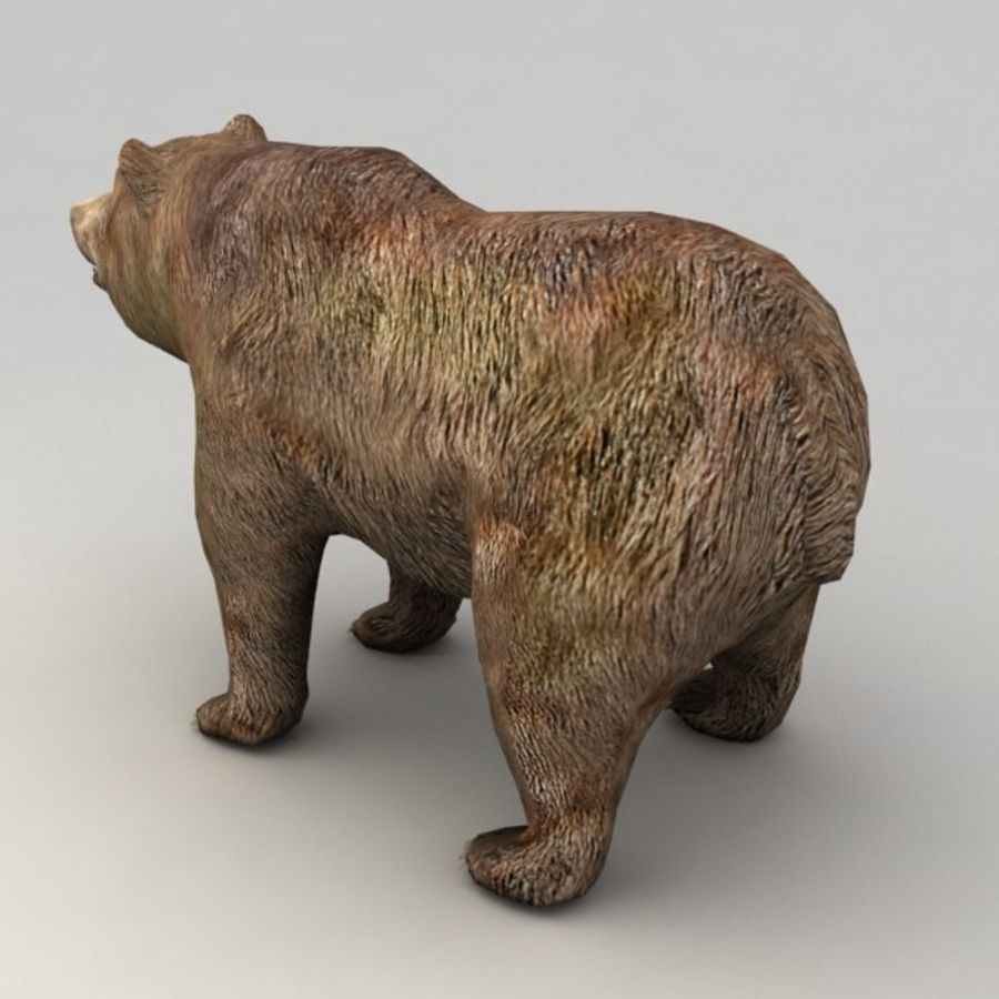 Animowany niski niedźwiedź grizzly royalty-free 3d model - Preview no. 3