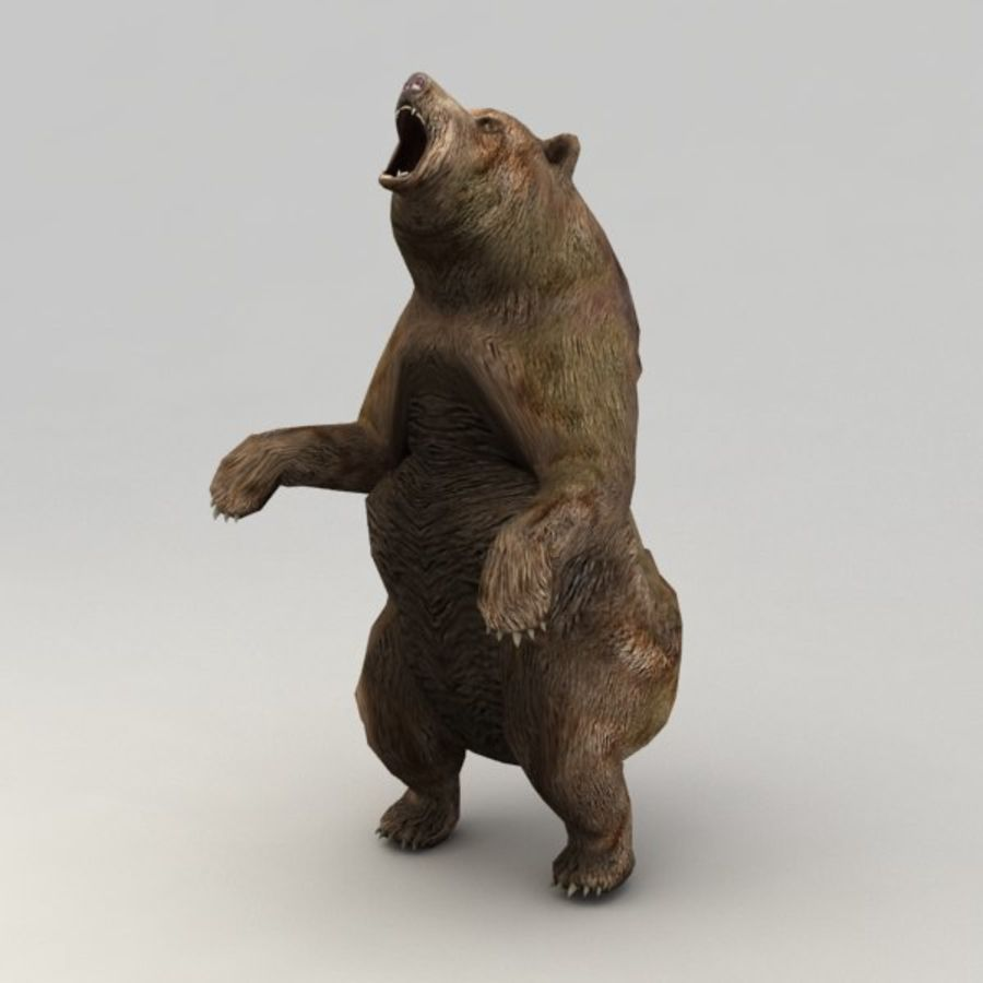 Animowany niski niedźwiedź grizzly royalty-free 3d model - Preview no. 6