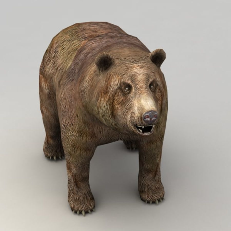 Animowany niski niedźwiedź grizzly royalty-free 3d model - Preview no. 4