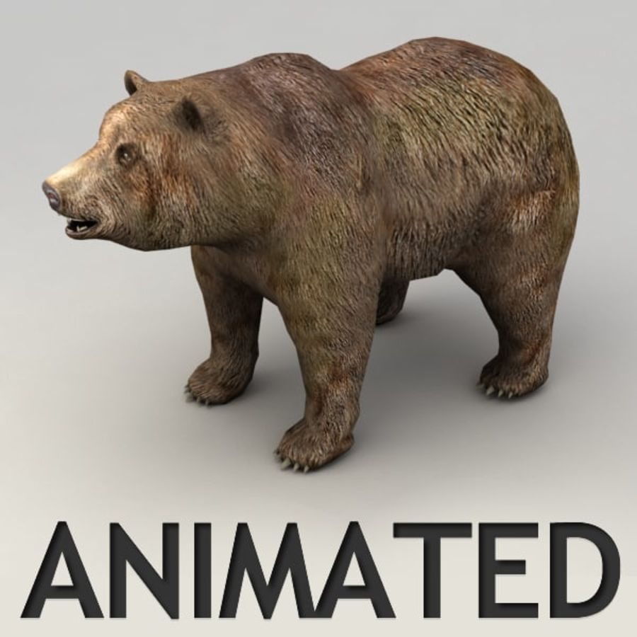 Animowany niski niedźwiedź grizzly royalty-free 3d model - Preview no. 1