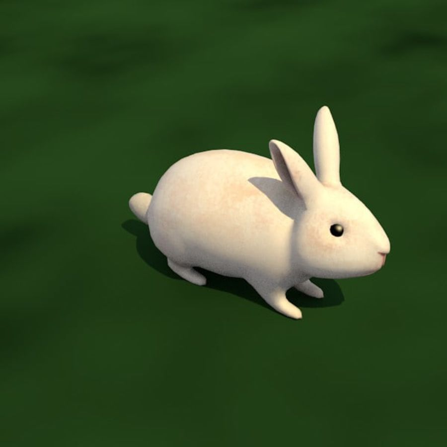 Rabbit royalty-free 3d model - Preview no. 1
