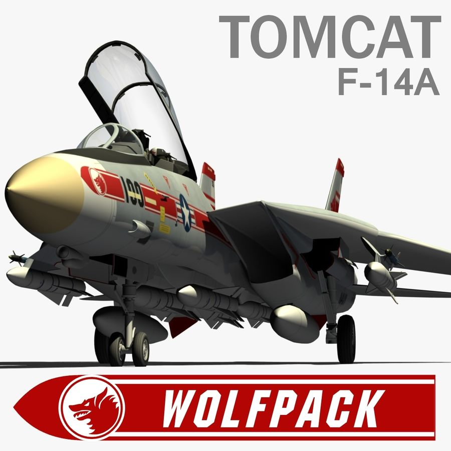 F-14A Tomcat Wolfpack royalty-free 3d model - Preview no. 1