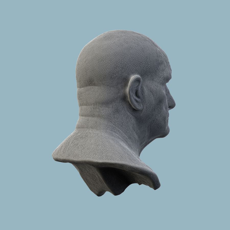 Roman Bust royalty-free 3d model - Preview no. 9