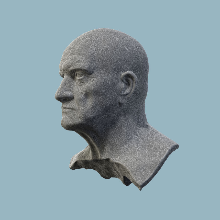 Roman Bust royalty-free 3d model - Preview no. 8
