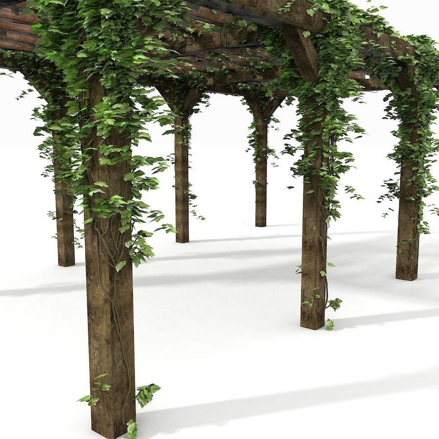 アイビー植物と木のパーゴラ royalty-free 3d model - Preview no. 8