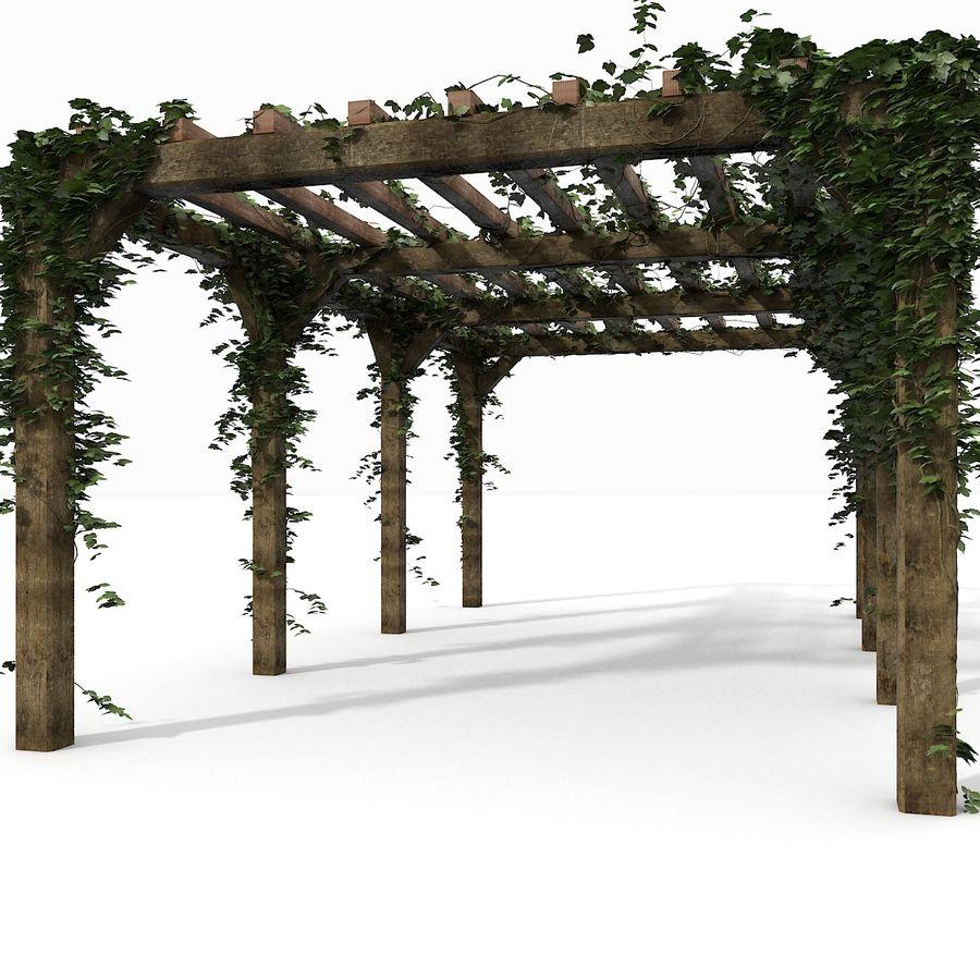 アイビー植物と木のパーゴラ royalty-free 3d model - Preview no. 7