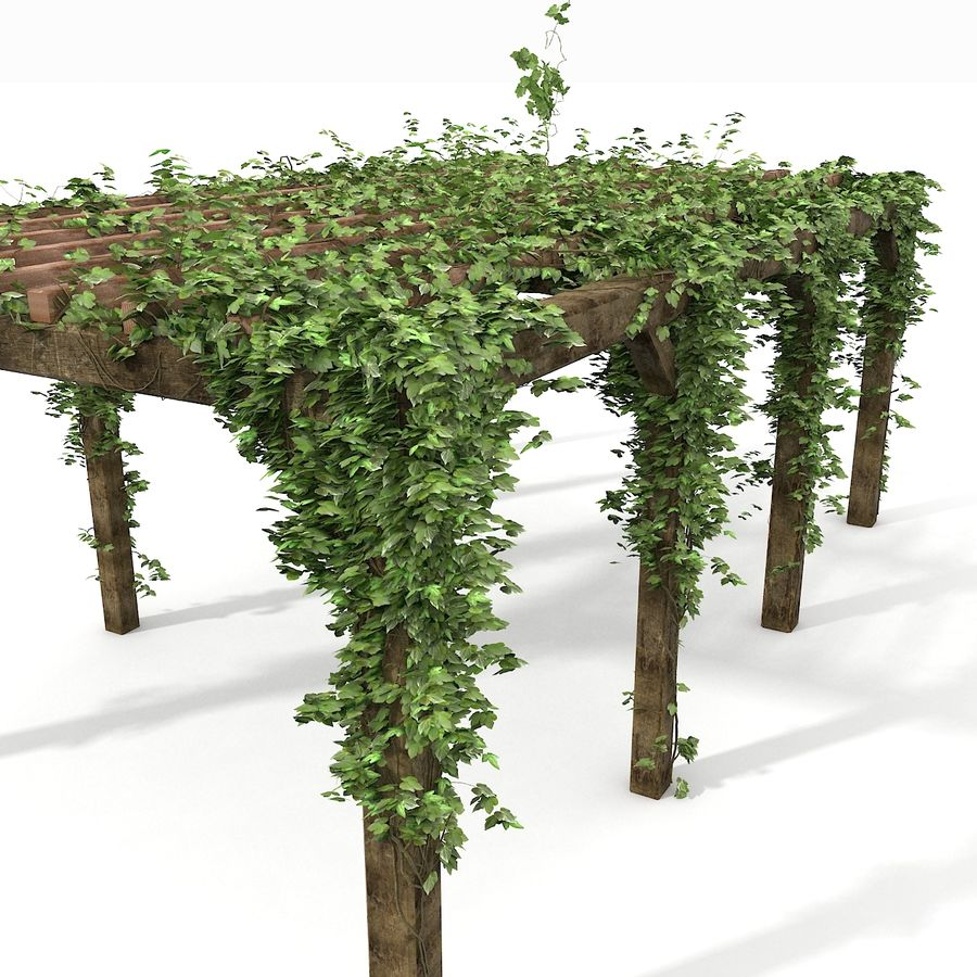 アイビー植物と木のパーゴラ royalty-free 3d model - Preview no. 15