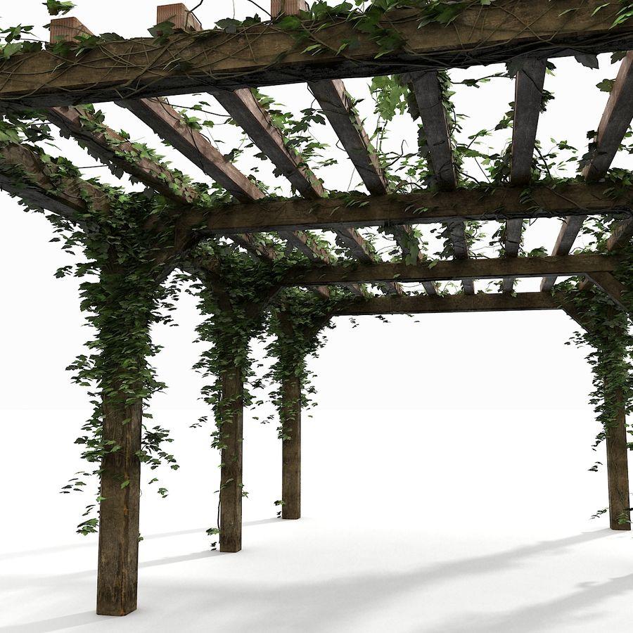 アイビー植物と木のパーゴラ royalty-free 3d model - Preview no. 11