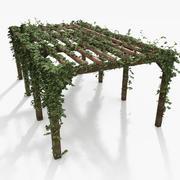 아이비 공장 나무 Pergola 3d model