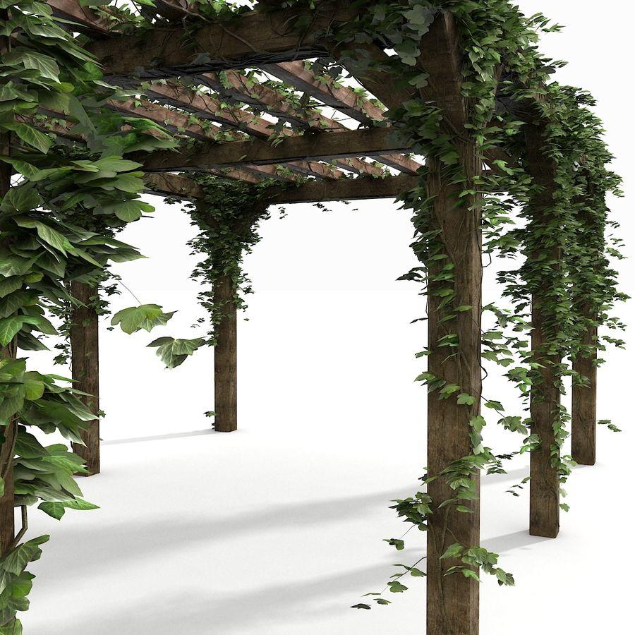 アイビー植物と木のパーゴラ royalty-free 3d model - Preview no. 12