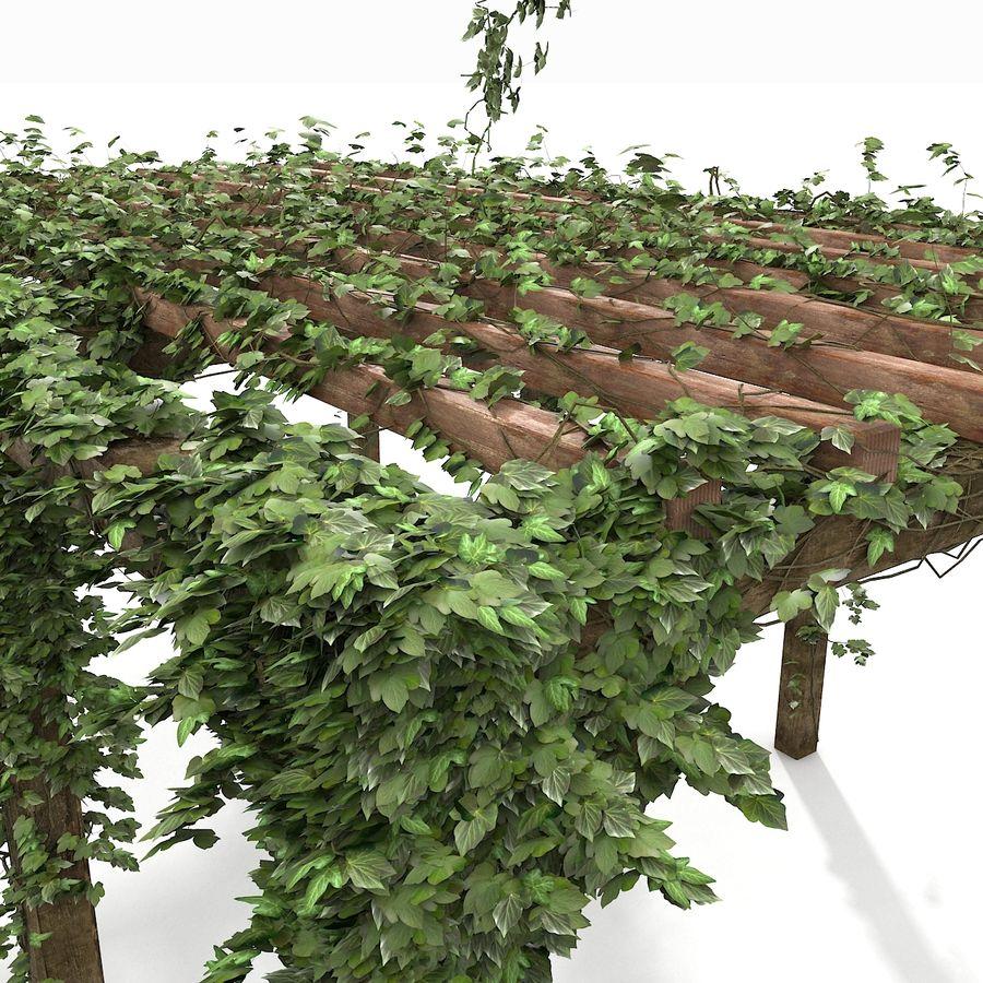 アイビー植物と木のパーゴラ royalty-free 3d model - Preview no. 5