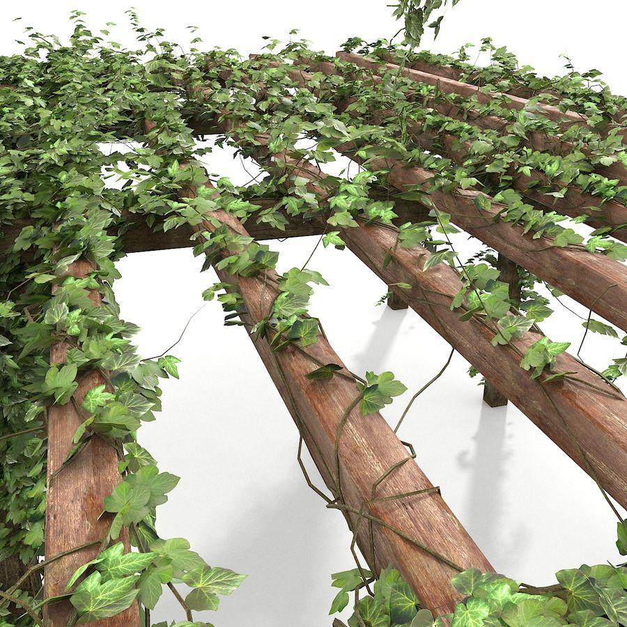 アイビー植物と木のパーゴラ royalty-free 3d model - Preview no. 10