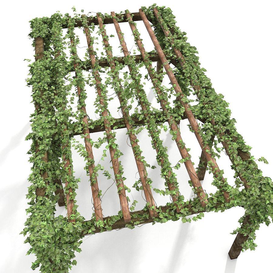 アイビー植物と木のパーゴラ royalty-free 3d model - Preview no. 3