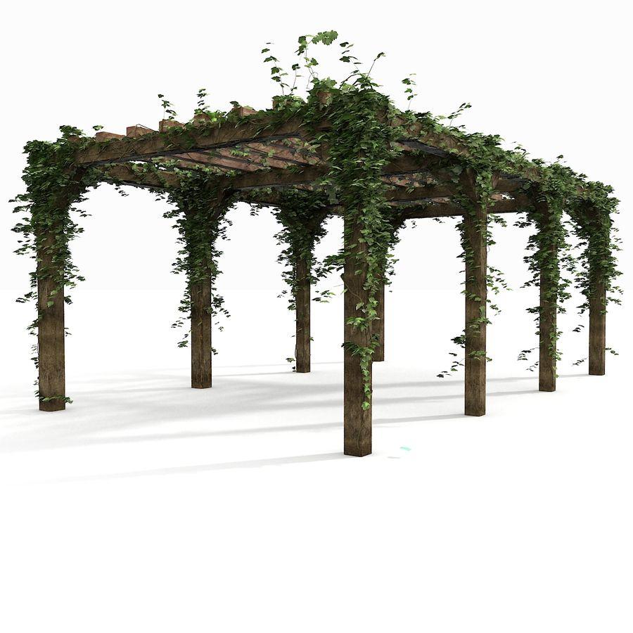 アイビー植物と木のパーゴラ royalty-free 3d model - Preview no. 6