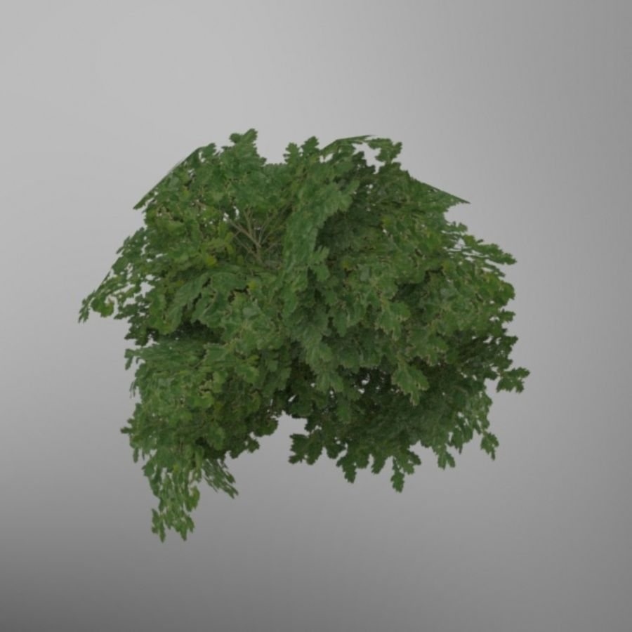 Buisson royalty-free 3d model - Preview no. 2