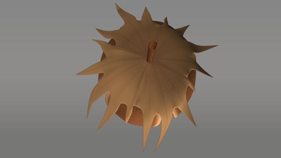 Gossypium herbaceum_ (Bawełna) royalty-free 3d model - Preview no. 5