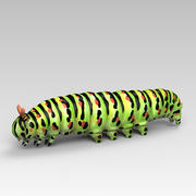 Machaon Caterpillar 3d model