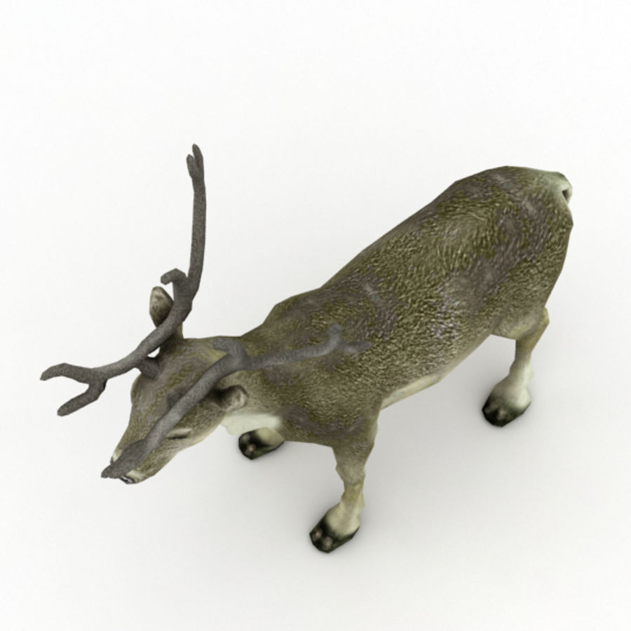 Reindeer Animated royalty-free 3d model - Preview no. 5