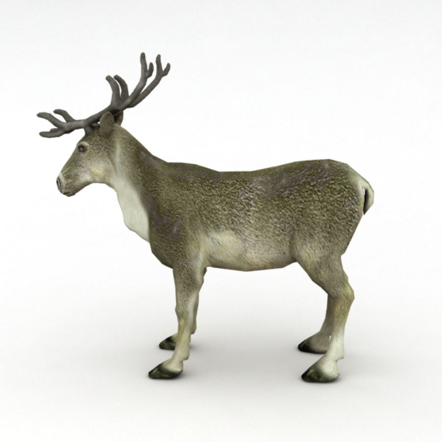 Reindeer Animated royalty-free 3d model - Preview no. 4