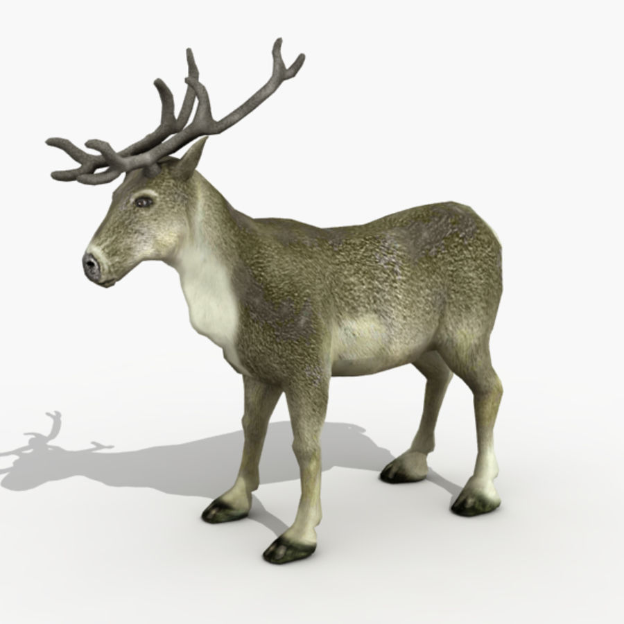 Reindeer Animated royalty-free 3d model - Preview no. 2