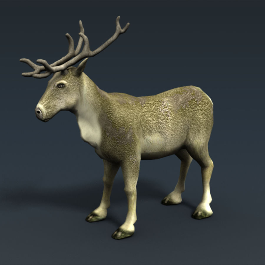 Reindeer Animated royalty-free 3d model - Preview no. 3