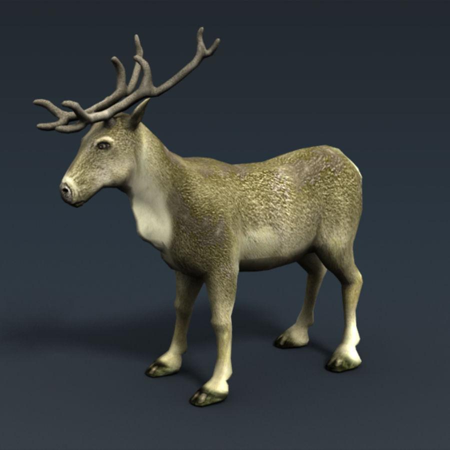Анимированные олени royalty-free 3d model - Preview no. 3