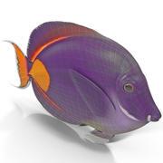 Achilles Tang 3d model