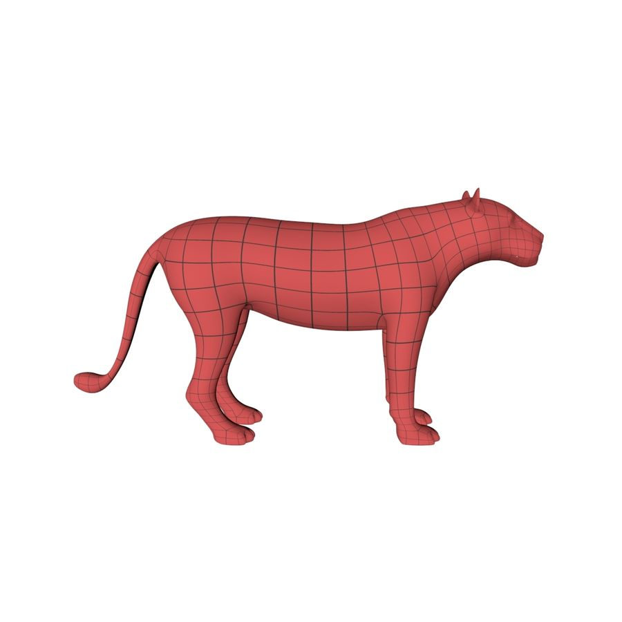 Lioness base mesh royalty-free 3d model - Preview no. 1