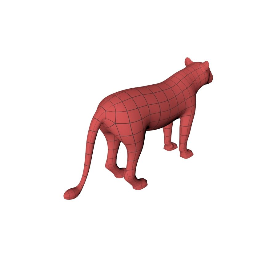 Lioness base mesh royalty-free 3d model - Preview no. 6