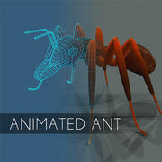 Animated ant insect textured and bumpmap 3d model