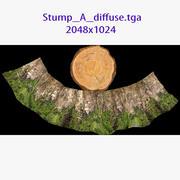 Stump A 3d model