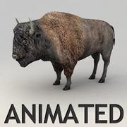 Bison Animated 3d model