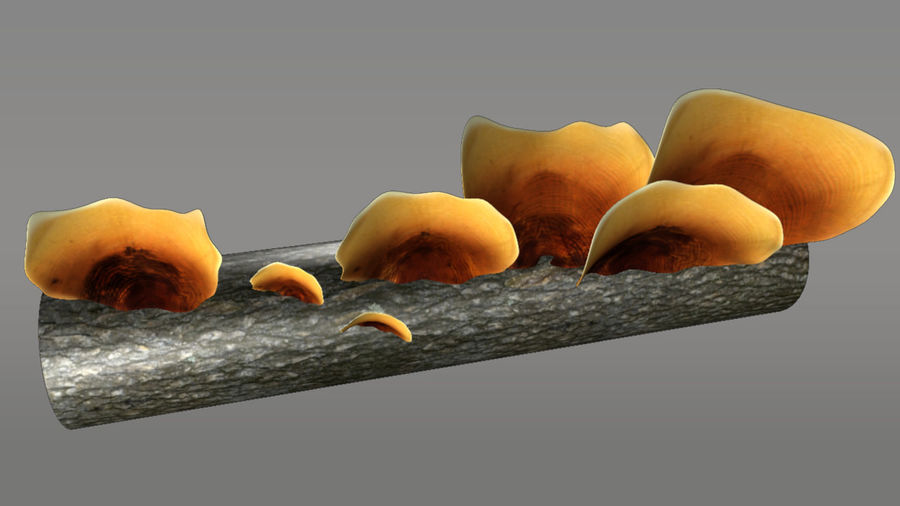Pilz royalty-free 3d model - Preview no. 1