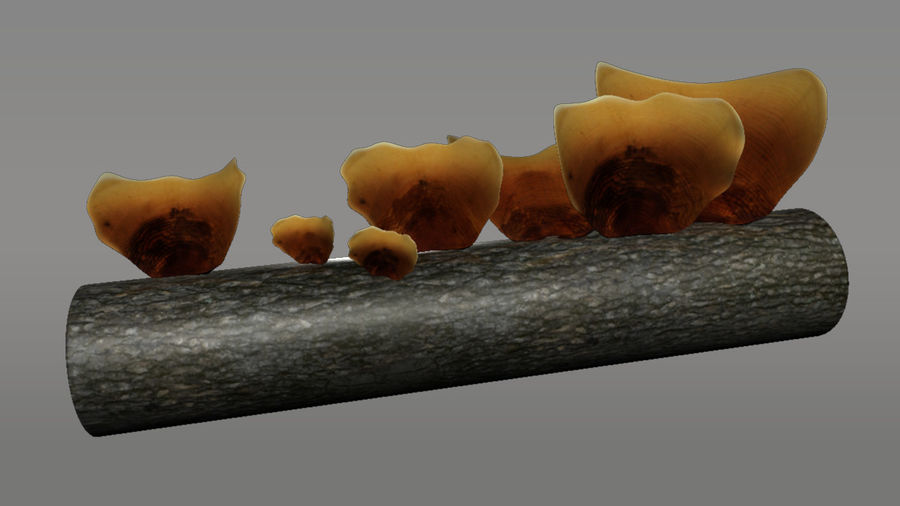Pilz royalty-free 3d model - Preview no. 2