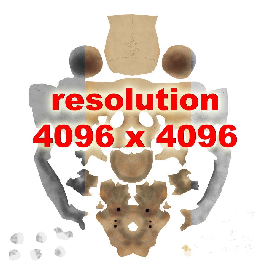 Human Skeleton royalty-free 3d model - Preview no. 24