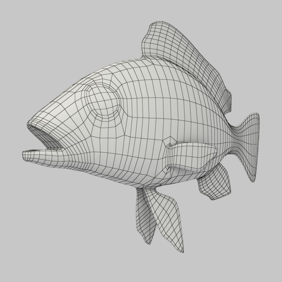 Roter Schnappfisch royalty-free 3d model - Preview no. 8