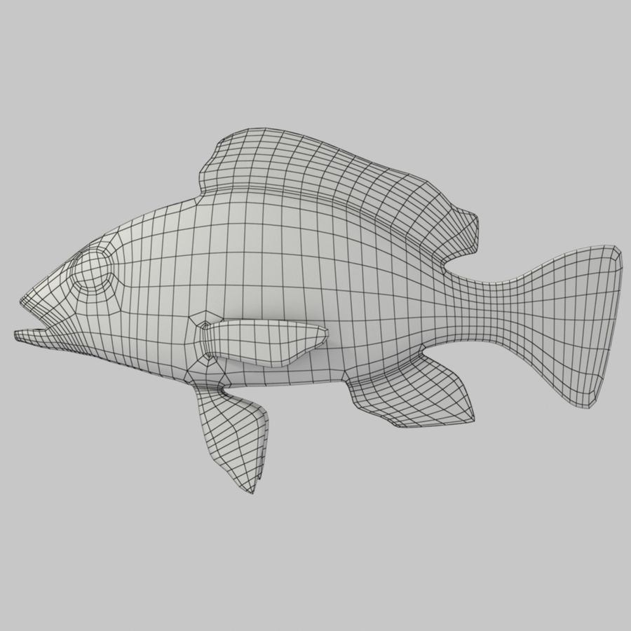 Roter Schnappfisch royalty-free 3d model - Preview no. 6