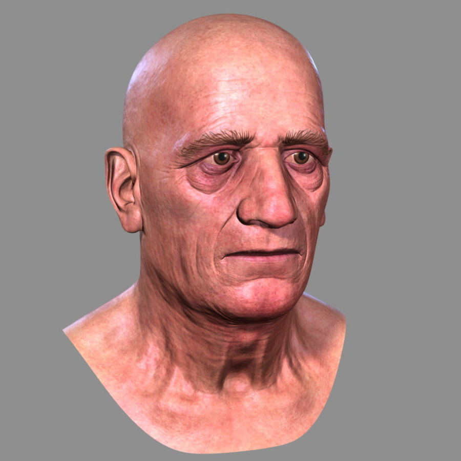 Old Man - Head royalty-free 3d model - Preview no. 2