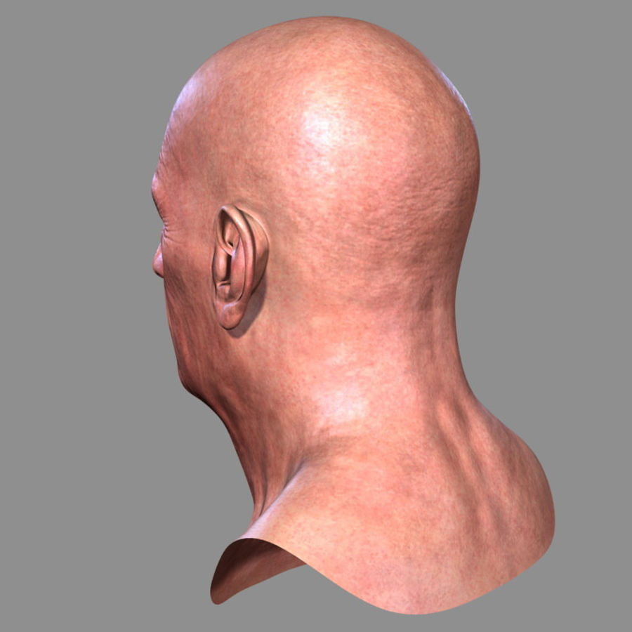 Old Man - Head royalty-free 3d model - Preview no. 7