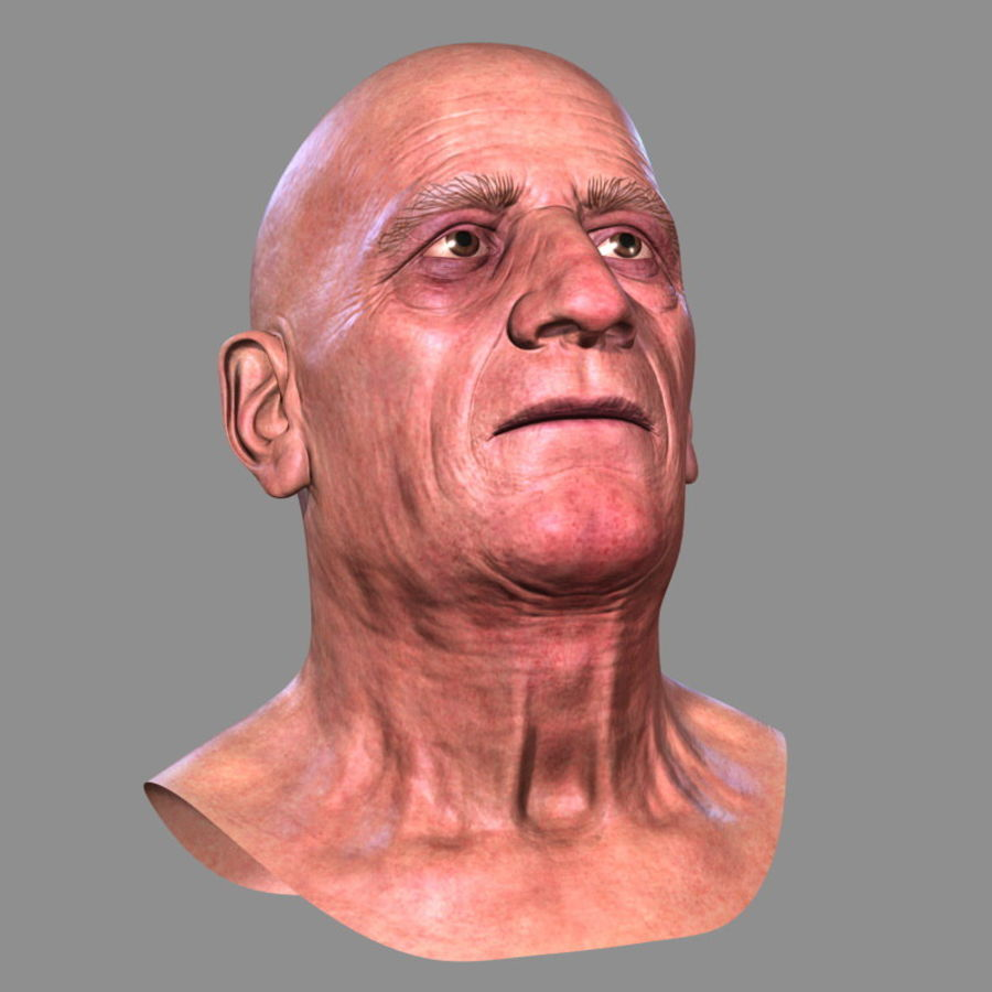 Old Man - Head royalty-free 3d model - Preview no. 8