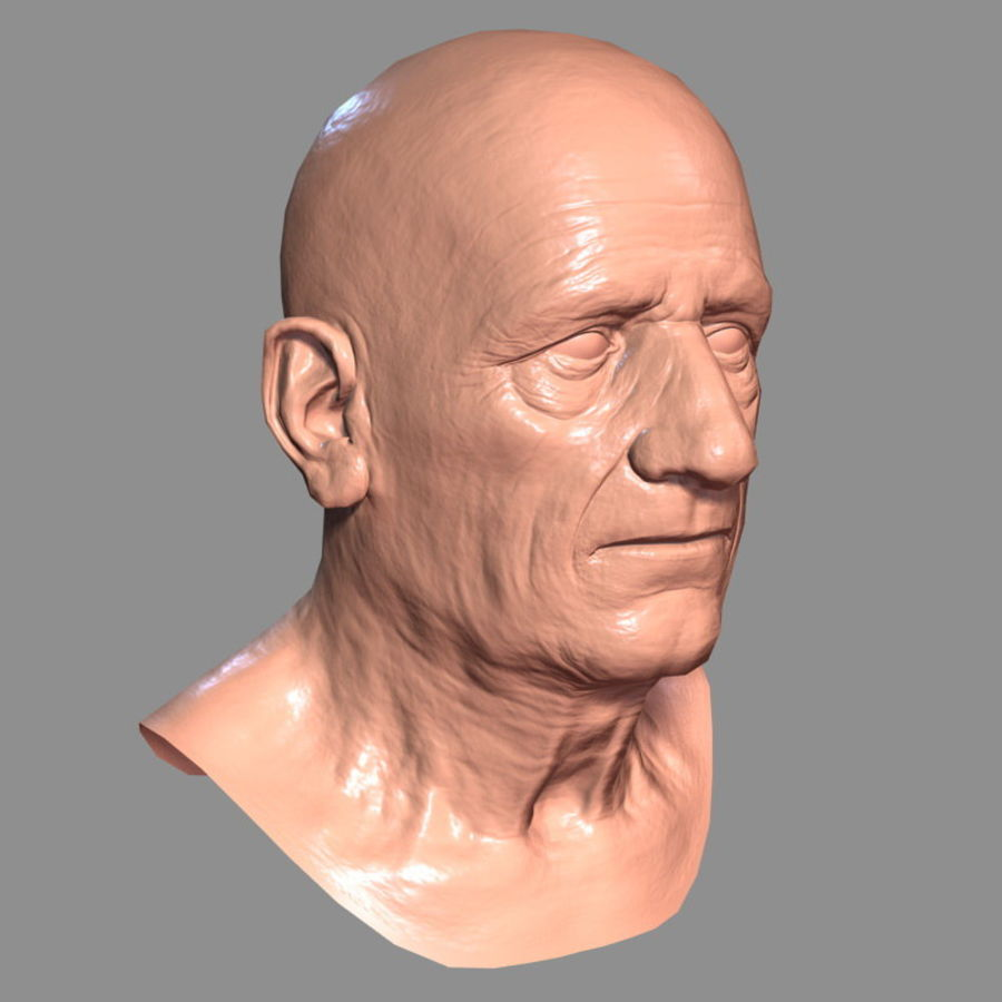 Old Man - Head royalty-free 3d model - Preview no. 19