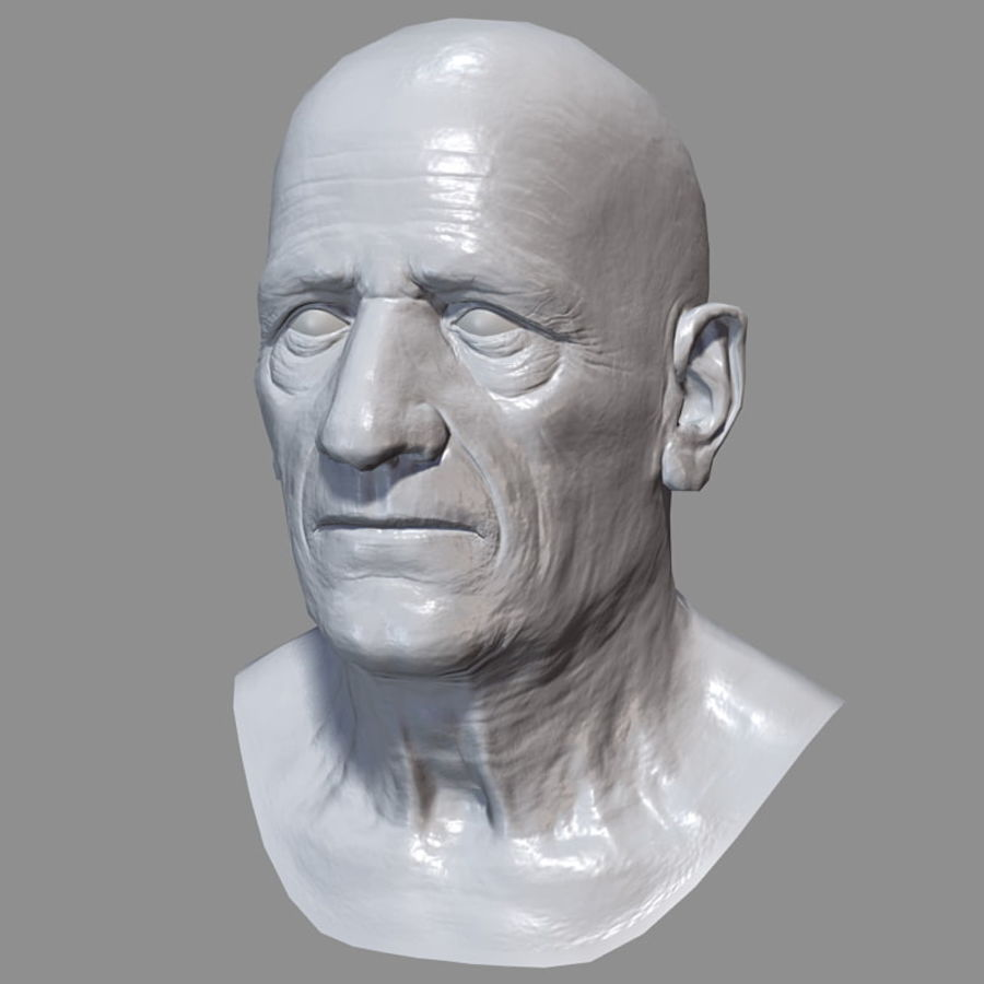 Old Man - Head royalty-free 3d model - Preview no. 23